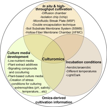 Culturomics Of The Plant Prokaryotic Microbiome And The Dawn