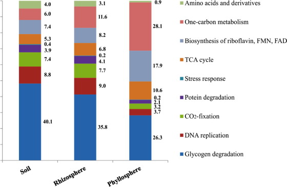 Novel insights into plant-associated archaea and their