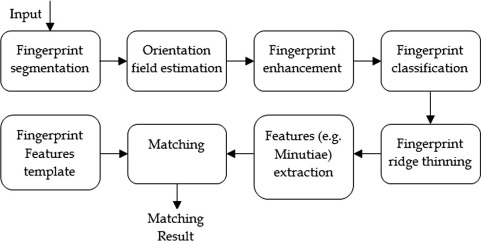 a medium resolution fingerprint matching system sciencedirect