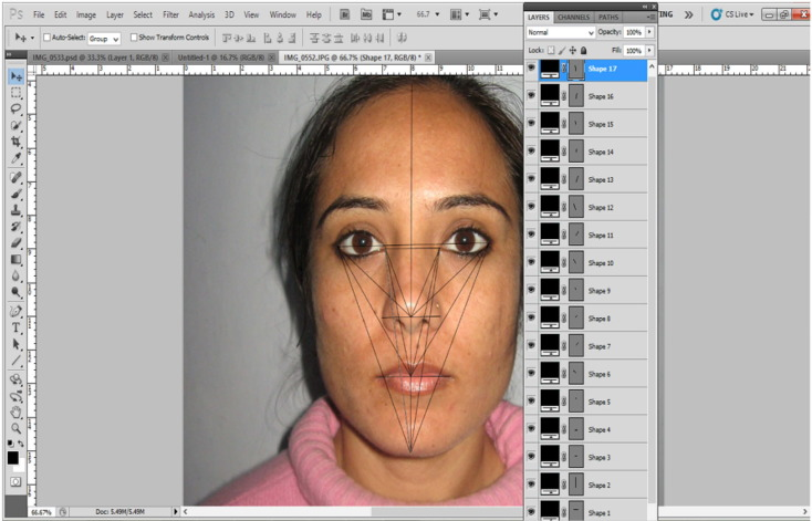 Face recognition using elastic grid matching through photoshop: A