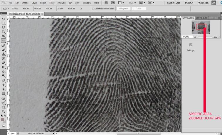 Digital grid method for fingerprint identification and ...