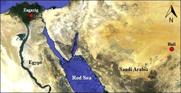 Phylogenetic Relationships Of The Land Snail Eobania Vermiculata - Map of zagazig egypt