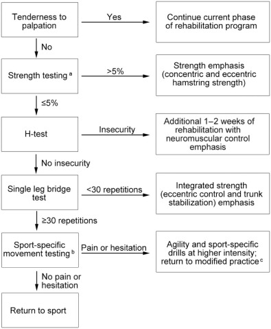 Rehabilitation And Return To Sport After Hamstring Strain