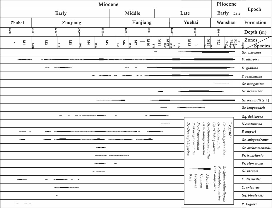 Foraminiferal biostratigraphy dating