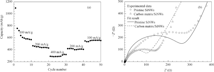 Carbon matrixsinws heterogeneous block as improved reversible a the rate capability at 100400 mag of the carbon matrixsinws heterogeneous block with the cycling tests conducted in a voltage window of 030 v ccuart Choice Image