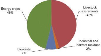 A Technological Overview of Biogas Production from Biowaste