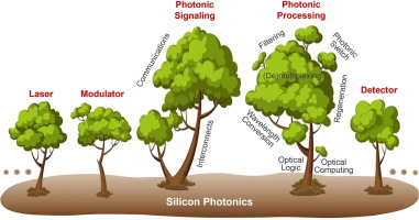 On-chip silicon photonic signaling and processing: a review