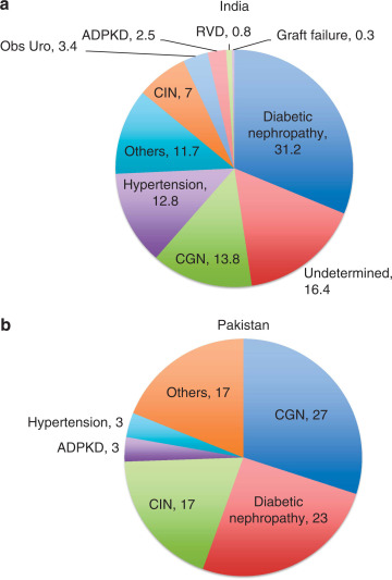 Current status of end-stage renal disease care in India and