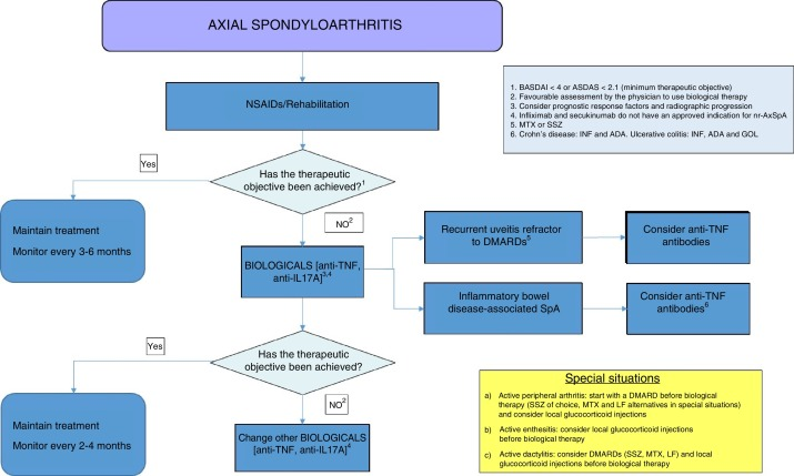 Recommendations by the Spanish Society of Rheumatology on