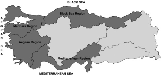 Port governance in Turkey: The age of the global terminal operators