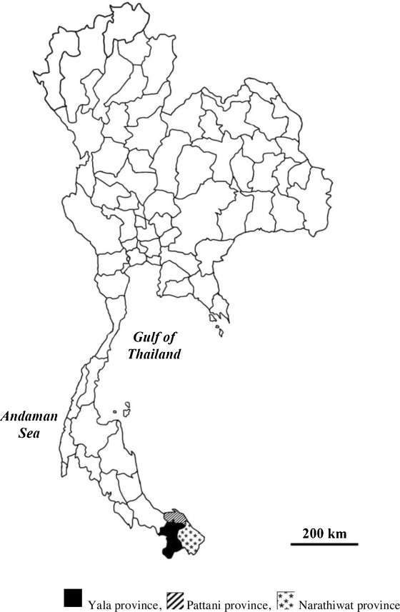 A survey of herbal formulas for skin diseases from Thailands three