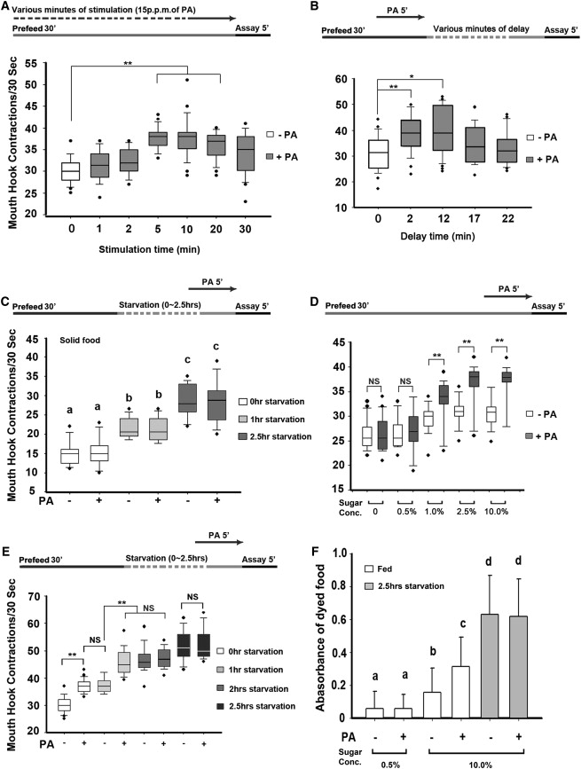 Neuropeptide-Gated Perception of Appetitive Olfactory Inputs in ...
