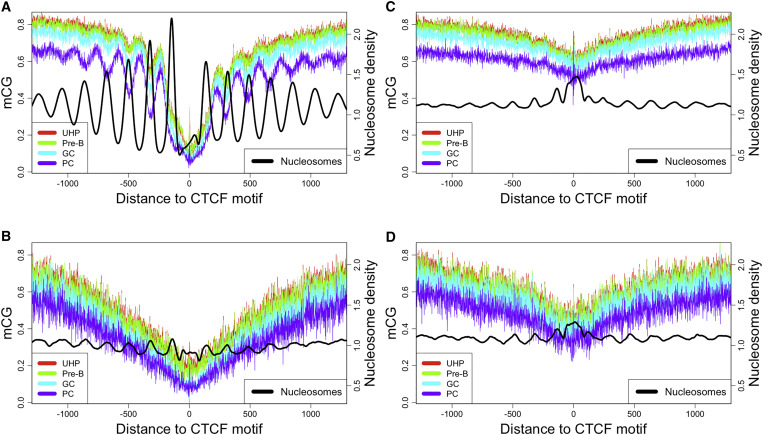 Distinct trends of dna methylation patterning in the innate and download full size image figure 4 dna methylation malvernweather Choice Image