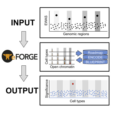 Eforge a tool for identifying cell type specific signal in graphical abstract malvernweather Gallery