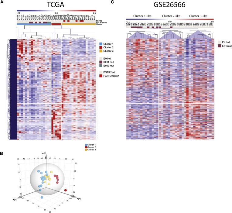 Integrative Genomic Analysis of Cholangiocarcinoma Identifies