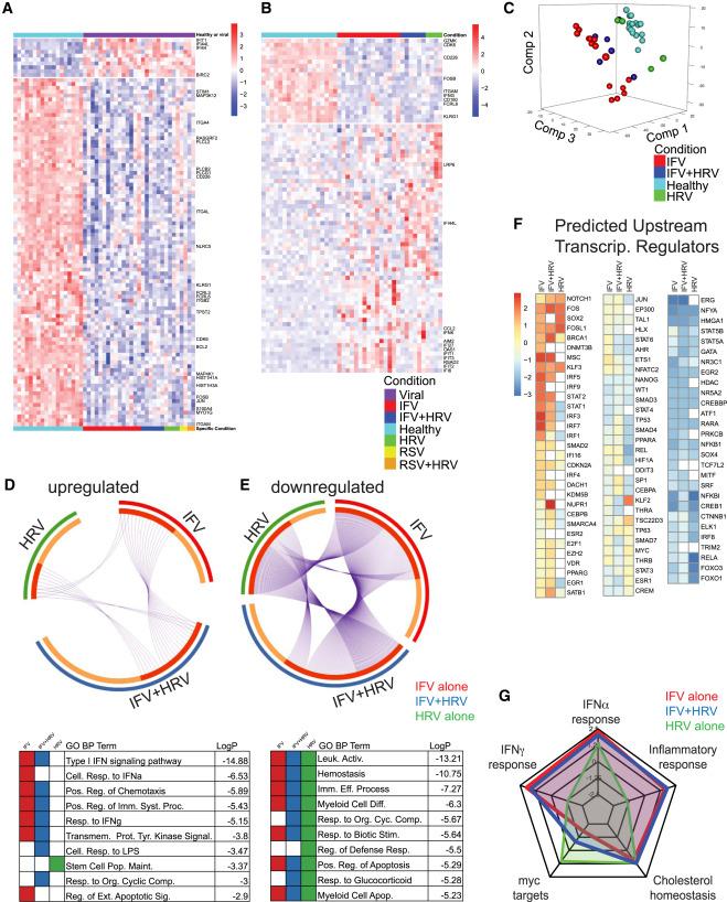 Genomic Circuitry Underlying Immunological Response to