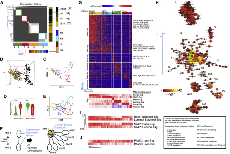 Single-Cell Transcriptomes Distinguish Stem Cell State Changes and