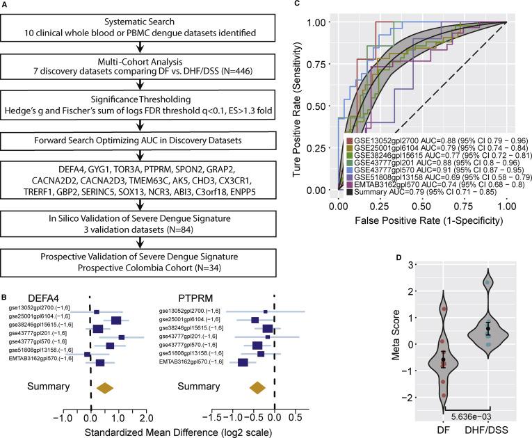 A 20-Gene Set Predictive of Progression to Severe Dengue