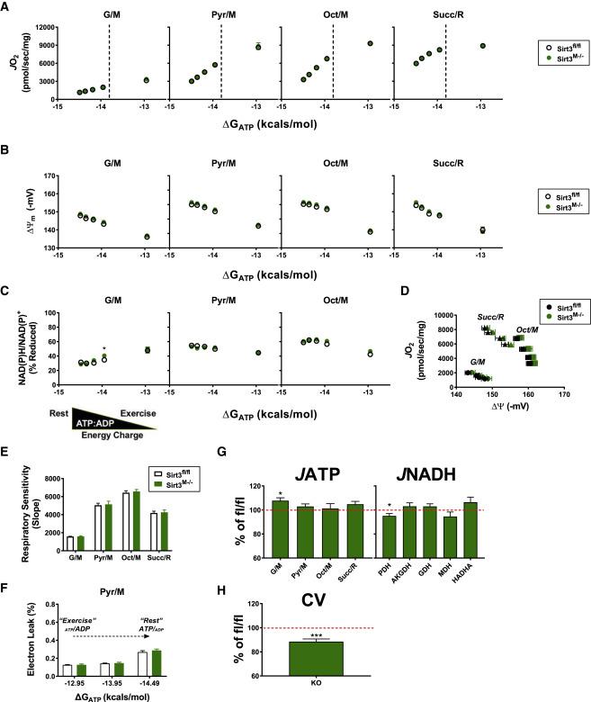 Respiratory Phenomics across Multiple Models of Protein