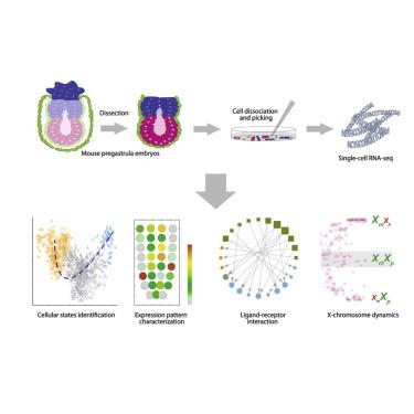 Single-Cell RNA-Seq Reveals Cellular Heterogeneity of