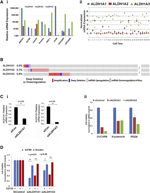 A Pan Aldh1a Inhibitor Induces Necroptosis In Ovarian Cancer Stem Like Cells Sciencedirect