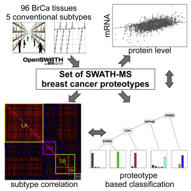 Breast Cancer Classification Based On Proteotypes Obtained By Swath Mass Spectrometry Sciencedirect
