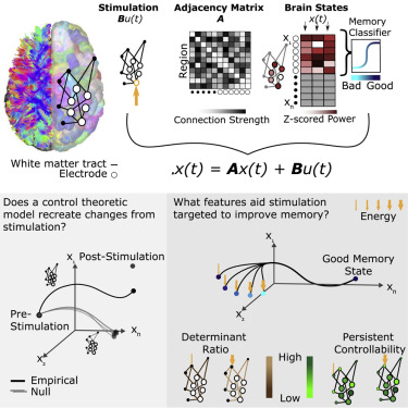[SODI_2457]   White Matter Network Architecture Guides Direct Electrical Stimulation  through Optimal State Transitions - ScienceDirect | Forest River Mb 221 Wiring Diagram |  | ScienceDirect