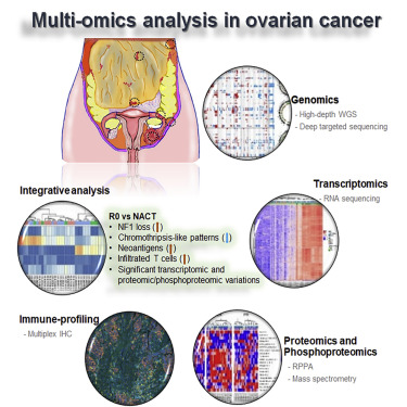 Molecular Analysis Of Clinically Defined Subsets Of High Grade Serous Ovarian Cancer Sciencedirect