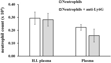 Ly6G-mediated depletion of neutrophils is dependent on
