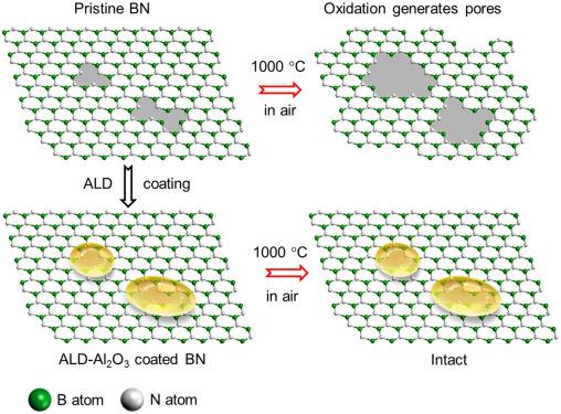 Protection of boron nitride nanosheets by atomic layer