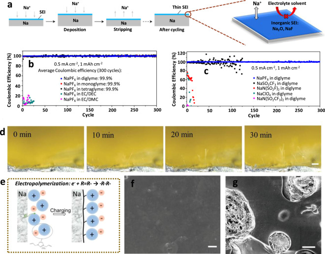 Recent advances in effective protection of sodium metal anode