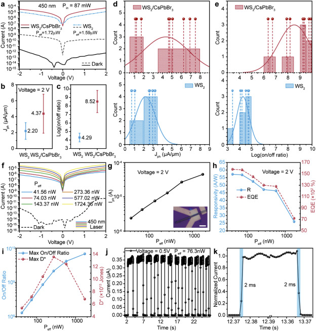 WS2/CsPbBr3 van der Waals heterostructure planar photodetectors with
