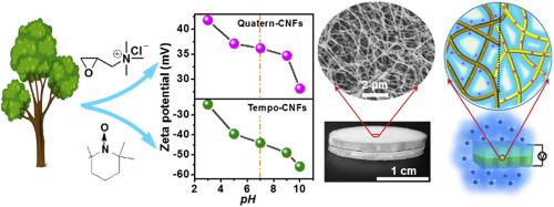 Asymmetric ionic aerogel of biologic nanofibrils for harvesting electricity from moisture W Yang, X Li, X Han, W Zhang, Z Wang, X Ma, M Li, C Li Nano Energy 2020, 71, 104610