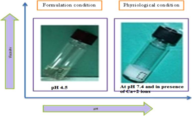 Development and characterization of in-situ gel for