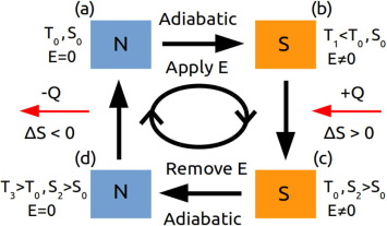 In the search of new electrocaloric materials: Fast ion