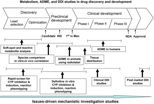 Preclinical Experimental Models Of Drug Metabolism And Disposition