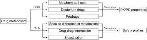 Drug Metabolism In Drug Discovery And Development Sciencedirect