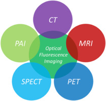 Recent developments in multimodality fluorescence imaging