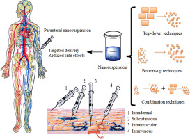 Parenteral nanosuspensions: a brief review from solubility ...