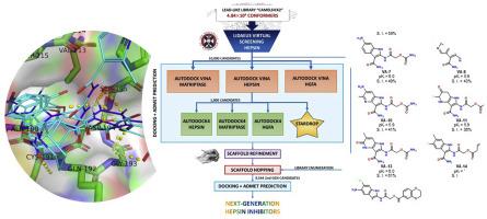 Design of drug-like hepsin inhibitors against prostate cancer and ...