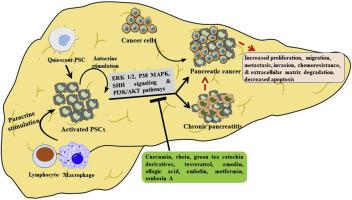Pancreatic cancer with pancreatitis - cadoujunkie.ro