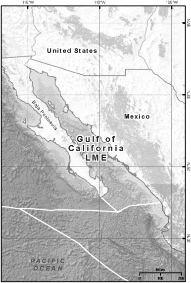 The Gulf of California Large Marine Ecosystem: Fisheries and
