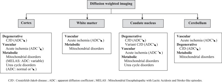 Early Onset Dementias Specific Etiologies And Contribution Of Mri