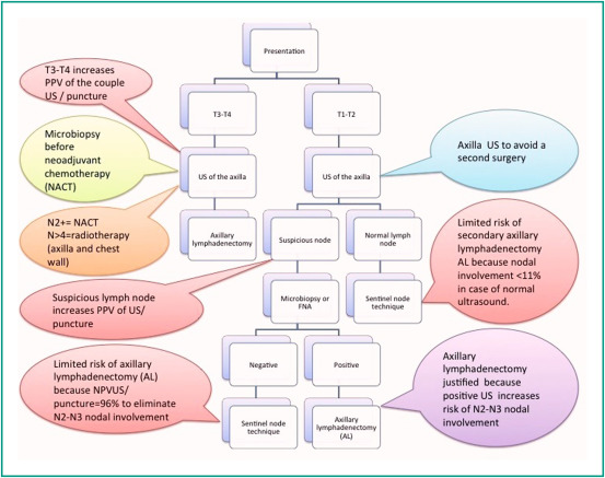 Diagnostic Strategy For The Assessment Of Axillary Lymph Node Status