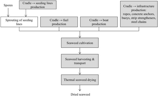 Explorative environmental life cycle assessment for system