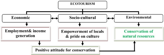 Ecotourism: A panacea or a predicament? - ScienceDirect