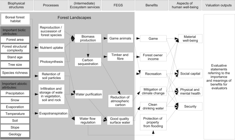Exploring Operational Ecosystem Service Definitions The Case Of