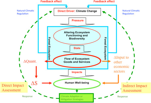 Valuing Climate Change Impacts On European Forest Ecosystems