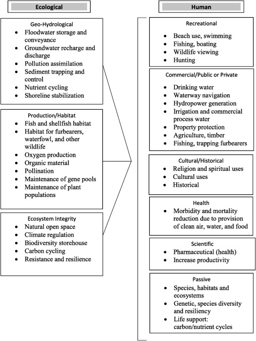 The Role Of Ecosystem Services In Usa Natural Resource Liability Litigation Sciencedirect