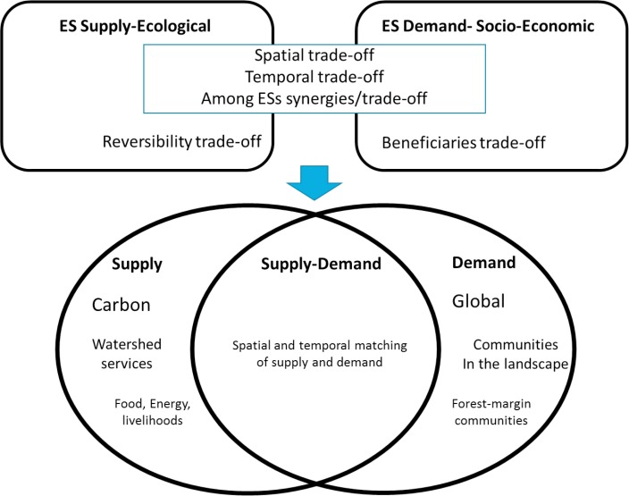 Managing Forests For Global And Local Ecosystem Services A Case Study Of Carbon Water And Livelihoods From Eastern Indonesia Sciencedirect